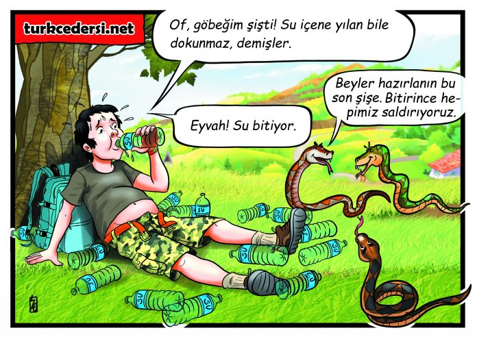 su-icene-yilan-bile-dokunmaz-karikaturu